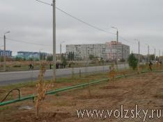 volzsky.ru-v-volzhskom-poyavilas-novaya-alleya